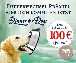 Dinner for Dogs Futterwechsel-Prämie